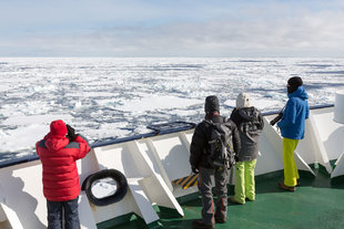 On the lookout in the Ross Sea