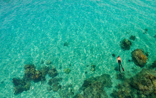 Snorkelling in northern Madagascar - Dr Simon Pierce MMF - Nosy Tanikely
