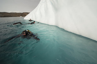 East Greenland Diving, Andy Davies