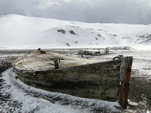 Whalers Bay Old Boat Deception Island Antarctica