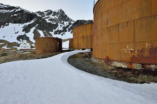 Grytviken Whaling Station remains, South Georgia