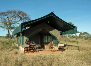 Tented Safari Camp in Serengeti National Park