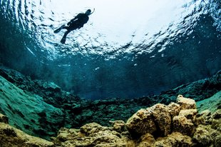 single-snorkeler-flying-over-lagoon-by-anders-nyberg-1800x1199.jpg