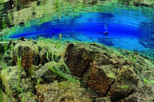 wideangle-lagoon-diver-reflection-silfra-iceland-diving.jpg