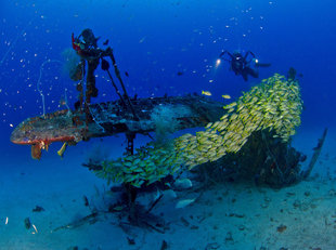 WWII Plane Wreck Diving in New Ireland - Mark Fuller