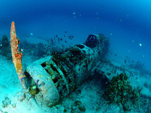 WWII Plane Wreck in the Bismarck Sea, New Ireland