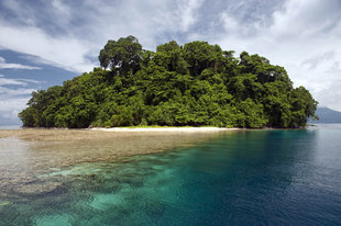 Tropical Island in Kimbe Bay - Jurgen Freund