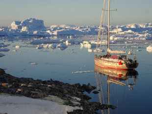 sailing-antarctica-wildlife-marine-life-holiday-cruise.jpg