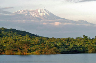 Mount Meru from Arusha National Park