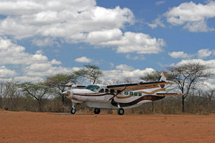 Flying Safari to Ruaha National Park