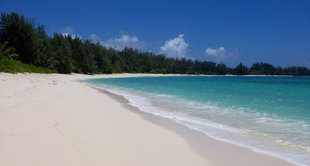 Denis Private Island Beach Seychelles Holly Payne.jpg