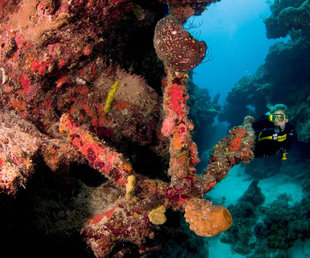 Wreck Diving in Turks & Caicos