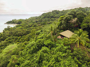 Rainforest Lodge in Corcovado National Park
