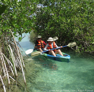Kayaking in Sian Ka'an Biosphere Reserve - Ralph Pannell - Aqua-Firma Adventure and Wildlife Travel Mexico