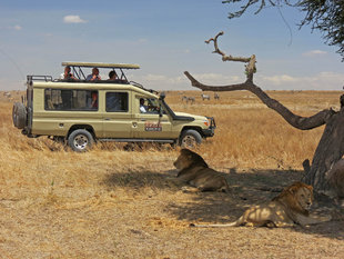 Aqua-Firma Wildlife Safari in Tanzania
