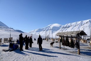trappers-station-spitsbergen-dog-sledding.jpg