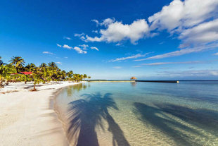 turneffe-atoll-mesoamerican-barrier-reef-caribbean-island-holiday-vacation-travel-photography-caye-kayaking-snorkelling-diving-scuba-dive-honeymoon-island-lodge-hotel-belize.jpg