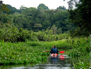 Kayaking in the Amazon Rainforest of Ecuador - photograph by Ralph Pannell, Aqua-Firma