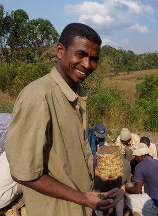 Tree Planting Reforestation & Habitat Reconstruction in Madagascar funded by Aqua-Firma Rainforest4Climate