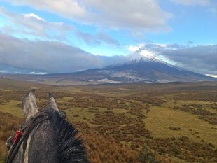 On a Longer Riding Trail to Cotopaxi Volcano
