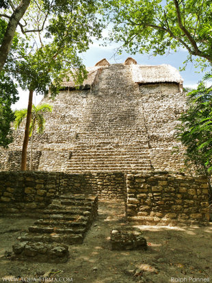 Steps leading up a pre-Mayan Omteca pyramid