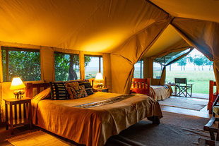 Luxury Safari Tent in the Masai Mara Reserve, Kenya