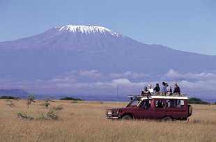 On Safari in Amboseli National Park in the shadow of Mountain Kilimanjaro
