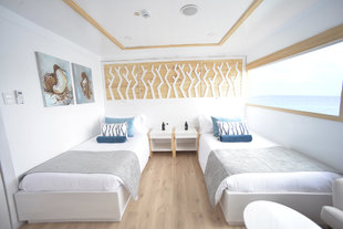 Sea Star Journey Twin Cabin